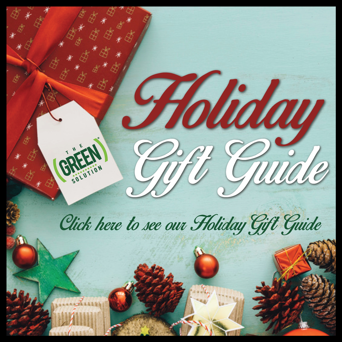 Holiday Gift Guide by The Green Solution