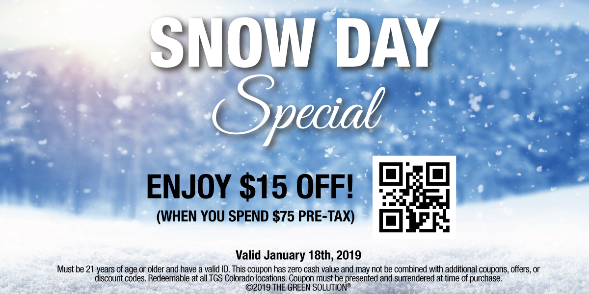 Snow Day Deal at The Green Solution, Jan 18, 2019