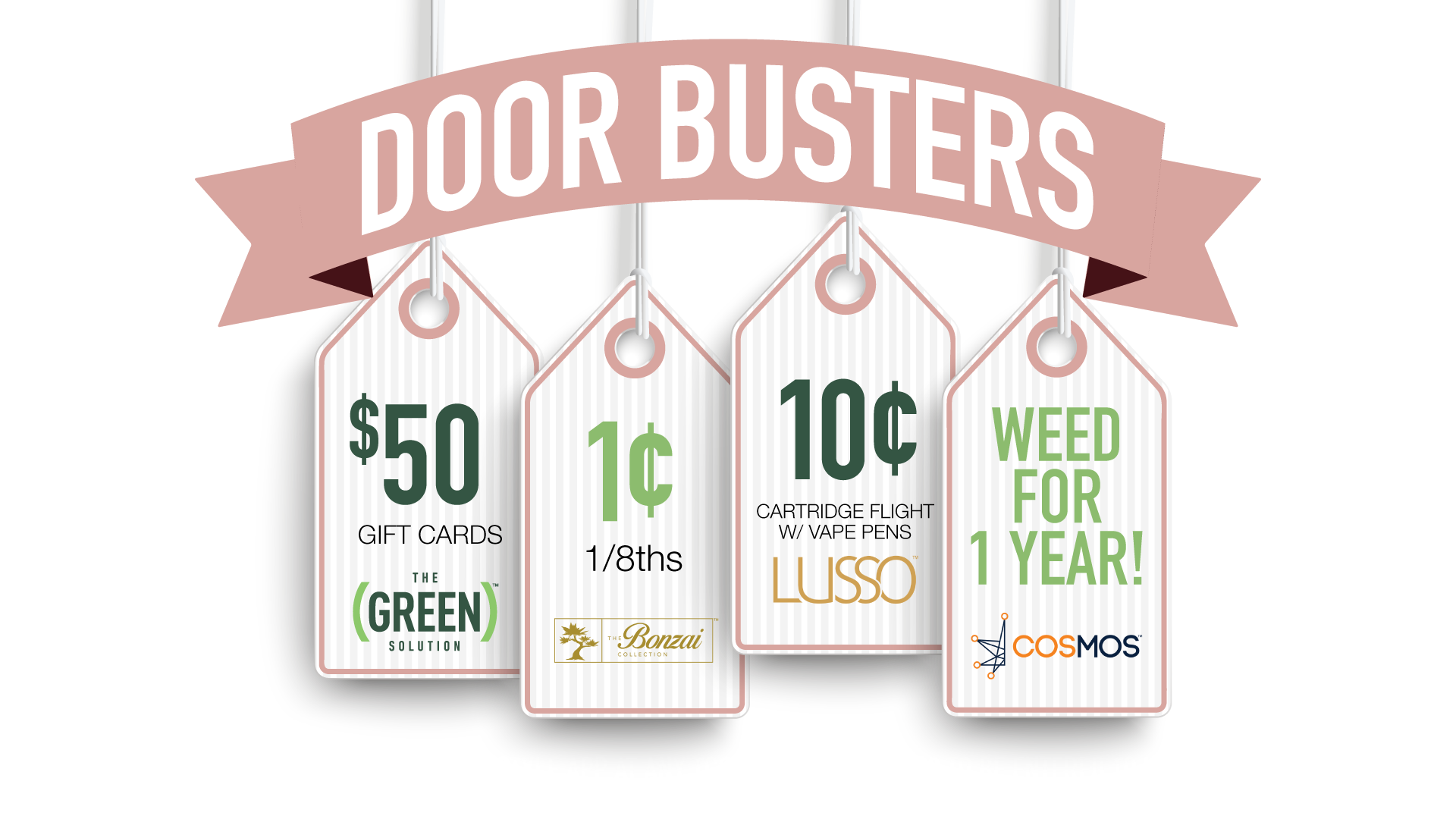 Black Friday Door Busters at The Green Solution