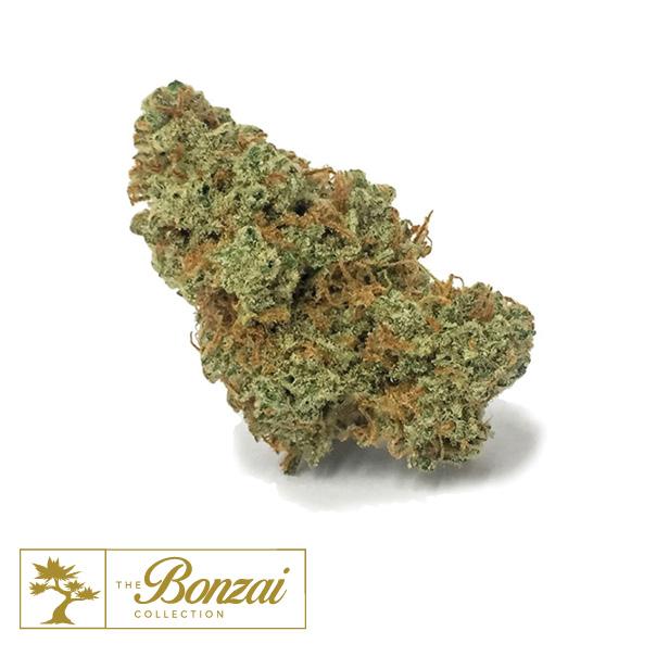 Flower | The Green Solution™ Recreational Marijuana