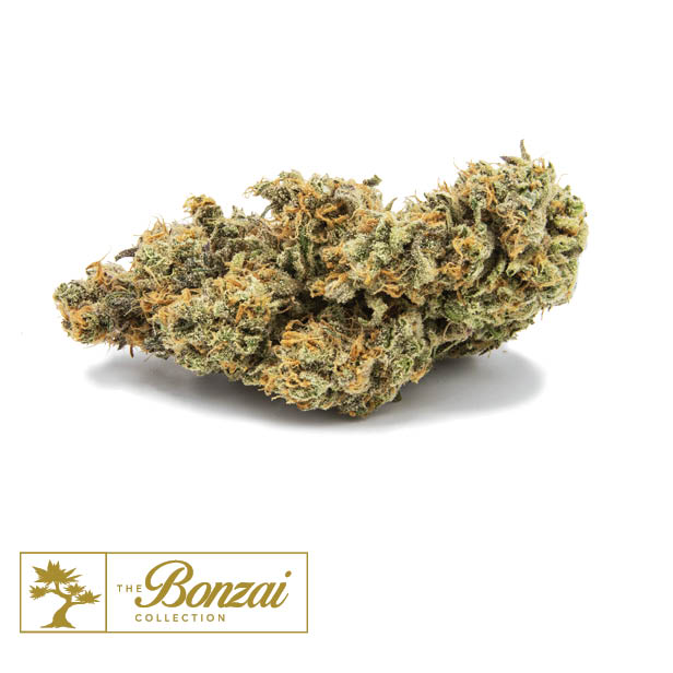 Flower | The Green Solution™ Recreational Marijuana